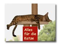 Katzen-Shop