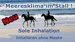 Sole Inhalation ohne Maske